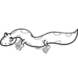 salamander cartoon coloring page vector image vector image