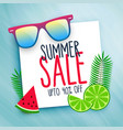 summer sale background with design elements vector image vector image