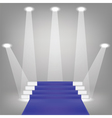 blue carpet vector image