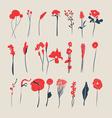 Hand Drawn vintage floral elements vector image vector image