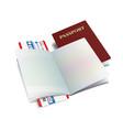 international passport with globe vector image vector image