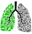 Lungs in danger vector image vector image