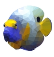 Polygonal of a tropical angelfish vector image vector image