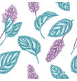 seamless pattern with hand drawn pastel peppermint vector image vector image