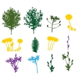 Set of Plant Tree Foliage Elements Silhouette vector image vector image