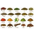 spices and herbs sketch set line icons vector image