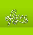spring lettering calligraphic text on ggreen vector image