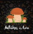 background with cartoon mushrooms and vector image vector image