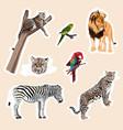 big set of cute cartoon animal stickers vector image