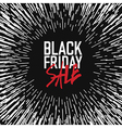 Black friday Poster Advertising design template vector image