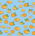 fresh oranges seamless vector image vector image