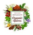 organic herb and spice seasonings market vector image vector image