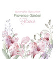 provence flowers garden watercolor vector image vector image