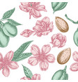 seamless pattern with hand drawn pastel almond vector image vector image