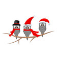 three owls on the branch in the santa claus hat vector image vector image