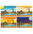 waterhole sceen at four different times vector image vector image