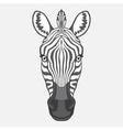 Zebra head vector image