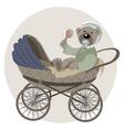 baby teddy bear vector image vector image