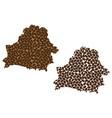 belarus - map of coffee bean vector image