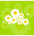 Bright summer background with camomile flowers vector image vector image