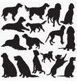 irish-setter silhouettes vector image vector image