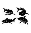 shark logo wildlife design set modern template vector image vector image