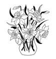 vase narcissus flowers daffodil flowerpot vector image