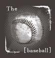baseball the ball vector image vector image