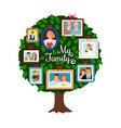 family green tree vector image