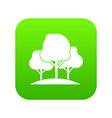 forest trees icon digital green vector image vector image