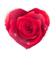 Isolated beautiful red rose heart EPS 10 vector image vector image