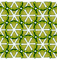 lime seamless pattern hand drawn background for vector image vector image
