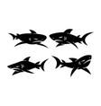 shark dangerous logo design set template vector image vector image