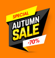 special autumn sale banner template vector image vector image