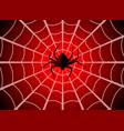 spider web cobweb trap gossamer halloween vector image vector image