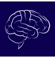 Symbol of the human brain vector image
