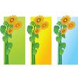 sun flowers vector image