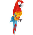 A bright macaw parrot isolated on white background vector image vector image