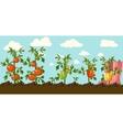 garden vector image vector image