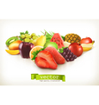 Harvest juicy fruit and berries isolated on white vector image