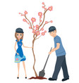 planting tree vector image