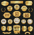 retro vintage golden badges and labels vector image vector image