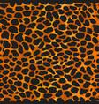seamless leopard ocelot or wild cat fur pattern vector image vector image