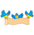 three birds with parchment vector image vector image