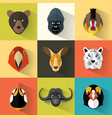 Animal portraits with flat design