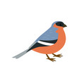 beautiful multi-colored bird isolated on white vector image vector image
