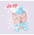 cute little cartoon baby pig in winter clothes vector image vector image