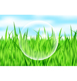 drop on grass vector image vector image