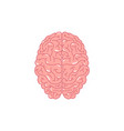 human brain concept vector image