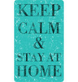 keep calm and stay at home vector image